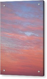 Pink In The Sky Acrylic Print