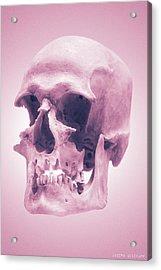 Pink Textures Acrylic Print