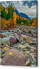 Point Of Color Acrylic Print