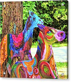 Pony Art   Acrylic Print