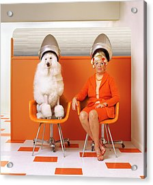 Poodle And Senior Woman Sitting Under Acrylic Print