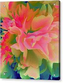 Pop Peony Petals Acrylic Print