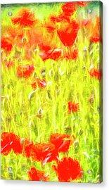 Poppy Meadow Dreams Acrylic Print