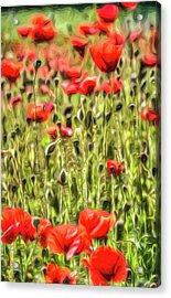 Poppy Meadow Vista Acrylic Print