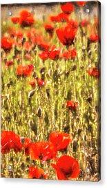 Poppy Monet Art Acrylic Print