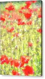 Poppy Pastel Art Acrylic Print