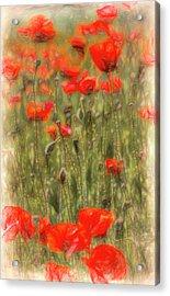 Poppy Summer Art Acrylic Print