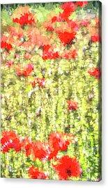 Poppy Summer Pastel Art Acrylic Print