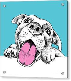 Portrait Of A Cheerful Dog On A Blue Acrylic Print