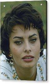 Portrait Of Sophia Loren Acrylic Print by Loomis Dean