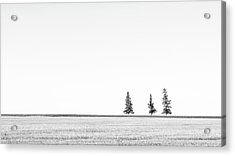 Prairie Woodland Acrylic Print