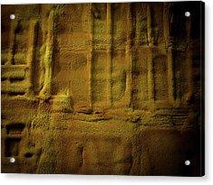 Prehistoric Scene Acrylic Print