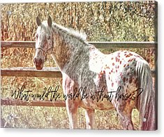 Pretty Appaloosa Quote Acrylic Print by JAMART Photography