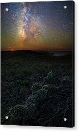 Acrylic Print featuring the photograph Pricked  by Aaron J Groen