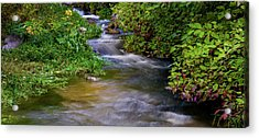 Acrylic Print featuring the photograph Provo Deer Creek by TL Mair