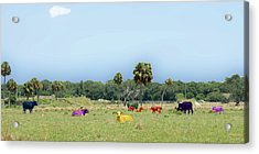 Psychedelic Cows Acrylic Print