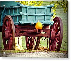 Acrylic Print featuring the photograph Pumpkin Trail Mix by Don Moore