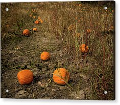 Acrylic Print featuring the photograph Pumpkins Lying In A Field by Whitney Leigh Carlson
