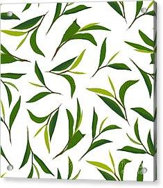 Pure Tea. Botanical Style Seamless Acrylic Print by Irache