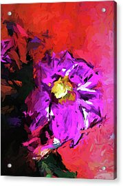 Purple And Yellow Flower And The Red Wall Acrylic Print