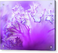 Purple Mystery Acrylic Print