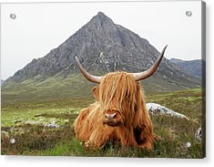 Quintessential Scotland Acrylic Print by Thedman
