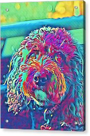 Rainbow Pup Acrylic Print