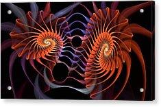Rainbow Velcro Acrylic Print