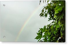 Rainbow With Leaves In Foreground Acrylic Print