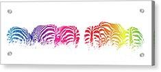 Rainbow Zebras Acrylic Print