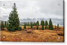 Rainy Day At Molas Pass Acrylic Print