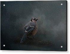 Rainy Day Blues  Acrylic Print