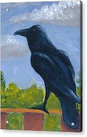 Raven On A Rail Acrylic Print