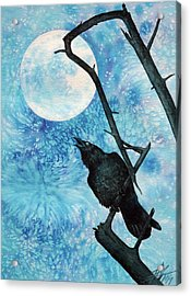 Raven With Torrey Pine Branch And Cold Moon Acrylic Print by Robin Street-Morris