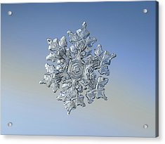 Acrylic Print featuring the photograph Real Snowflake - 05-feb-2018 - 17 by Alexey Kljatov