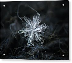 Acrylic Print featuring the photograph Real Snowflake - 18-dec-2018 - 3 by Alexey Kljatov