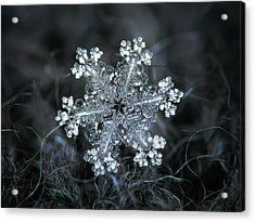Acrylic Print featuring the photograph Real Snowflake - 26-dec-2018 - 1 by Alexey Kljatov