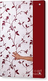 Red #0586 Acrylic Print