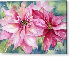 Red And Pink Poinsettias Acrylic Print