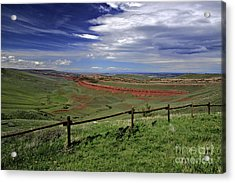 Red Canyon Wyoming Acrylic Print