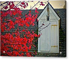 Acrylic Print featuring the photograph Red... by Don Moore