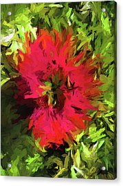 Red Flower Flames Acrylic Print