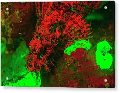 Red Fluorescing Scorpionfish Surrounded Acrylic Print by Stuart Westmorland