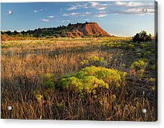 Acrylic Print featuring the photograph Red Hills Evening by Scott Bean