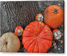 Red Orange Acrylic Print by JAMART Photography