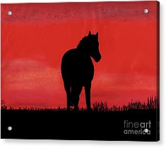 Red Sunset Horse Acrylic Print