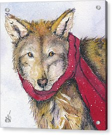Red Wolf And Scarf Acrylic Print