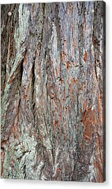Acrylic Print featuring the photograph Redwood Bark by Mark Duehmig