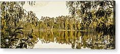 Reflective Rivers Acrylic Print