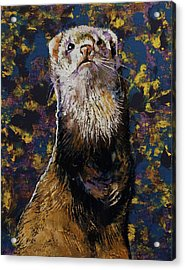 Regal Ferret Acrylic Print
